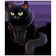 hwblackcat